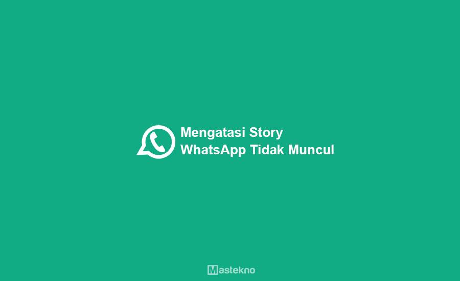 Cara Mengatasi Story WhatsApp Tidak Muncul